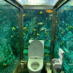 【画像】水族館トイレがこちらWWWWWWWWWWWWWWWWWWWWWWWWWWWWWWWWWWWWwwwwwwWWW