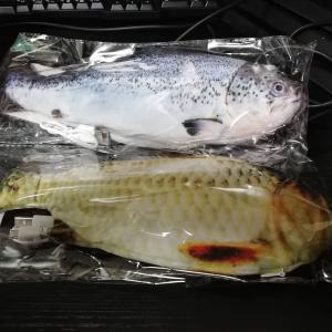 【画像】Amazonから届いた7円の魚шшшшшшшшшшшш