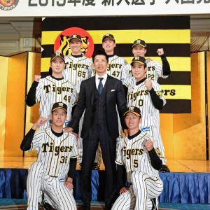 阪神2019高卒ドラフトのファーム成績wwwwzwwwwzwwwwzwwwwzwwwwzwwww