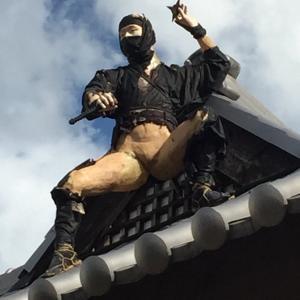 【悲報】忍者村の忍者さん、暴風雪でズル剥けになるwwwwwwwwwwwwww