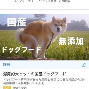 【画像】ドッグフード業者さん、出す寸前を広告に使用してしまうwwwwwwwwwwww