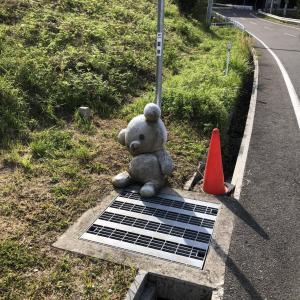 【画像】道にクマの人形が落ちてたんやがwwwwwwwwwwwww