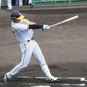 【阪神】井上広大 8号2ラン含む3安打2打点の大暴れ サヨナラ劇起点にも