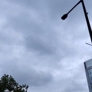 6月12日 雨確定