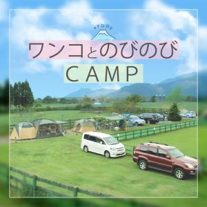 FDGのキャンプについて
