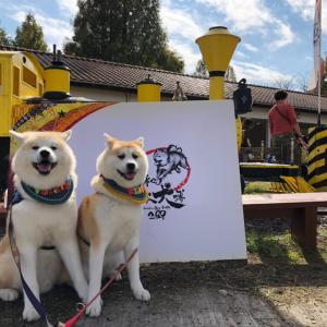 令和日本犬博2020☆