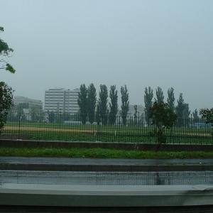 雨にけむる札幌