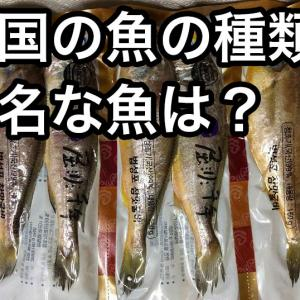 韓国の魚の種類!有名なのはイシモチ!日本とはちょっと違うお魚事情