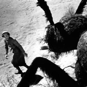 ★明日11日(土)CINEMA BAR GURENTAIは「海外の古典怪獣映画を語る会2」です★