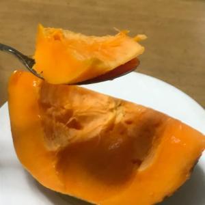 フルーツパパイヤ / まるとよ農産