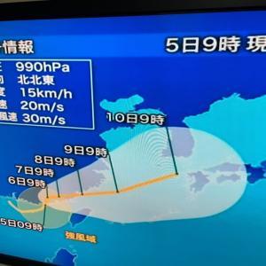 台風9号と熱帯低気圧/また船舶欠航
