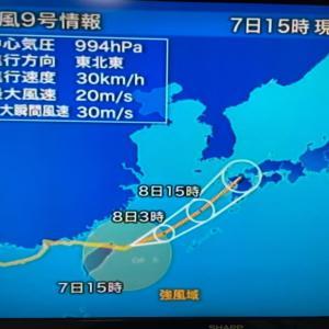 台風と熱低の日本列島/台風9号はしぶとい