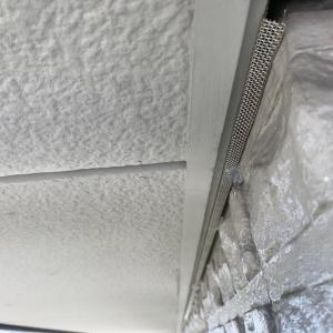 ダインコンクリート外壁のコウモリ対策