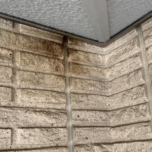 ダインコンクリート住宅の蝙蝠対策
