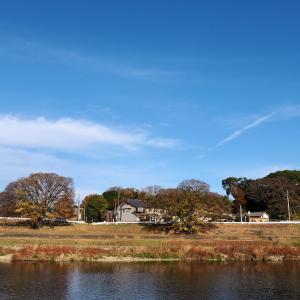 矢田川からの風景 その2
