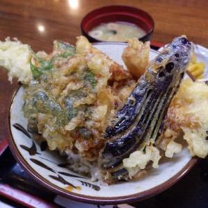 やぶ忠 丸山台店 [港南区] / 穴子丼セット