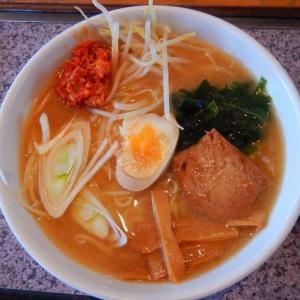 永新 [南房総市] / 担々麺 + 餃子 + チャーハン食べ放題