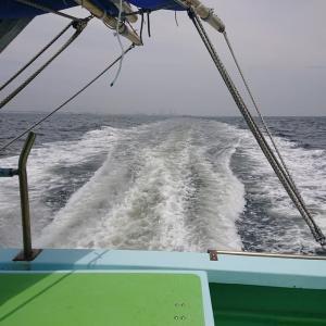 でぶアジの強引、八景沖のLTアジ