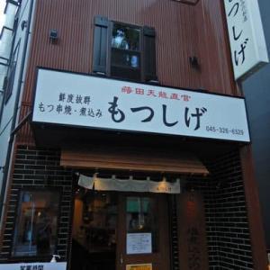 もつしげ 野毛宮川橋店 [中区] ~ ドリンク半額のメガジョッキで