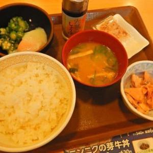 すき家 横浜日野中央店 / 鮭のっけ朝食