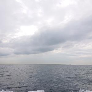 なかなか大甘に会えない日々、湾口のアマダイ