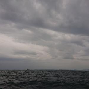 今季を占う?彼岸スタート、東京湾スミイカ