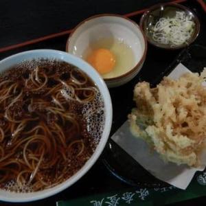 味奈登庵 港南台店 [港南区] / かけそば + ごぼう天 + 玉子
