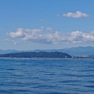 平塚沖アマダイは魚種多彩