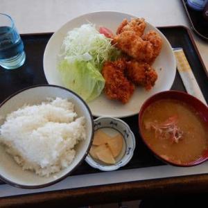 おいけ食堂 [いすみ市] / カキフライ定食