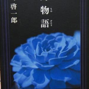 一月物語 - 平野啓一郎 (新潮社)