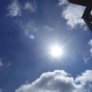 久々の太陽オーブ祭り