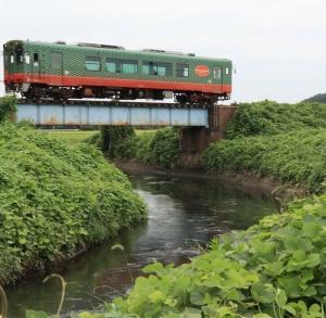夏の終わりの真岡鉄道     多田 誠