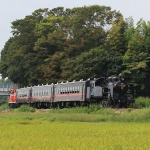 真岡鉄道の蒸気     多田 誠