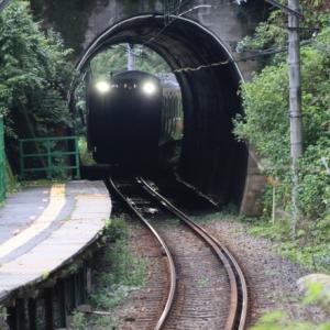 トンネルの先は     多田 誠