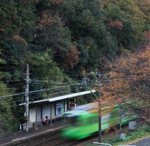 秋の訪れ     多田 誠