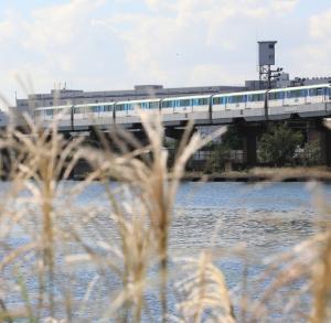 京浜運河散歩     多田 誠