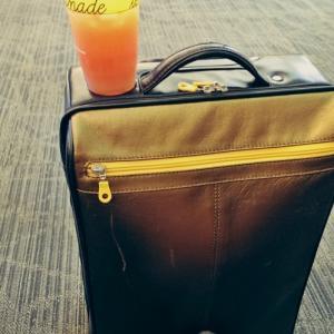 ばいばいスーツケース