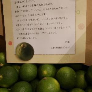 ☆本日9/19(土)営業しまーす〓