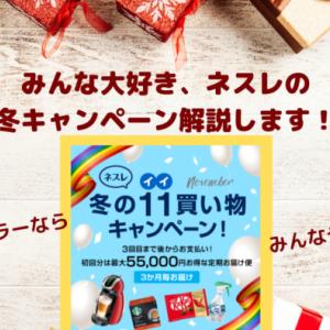 【陸マイラー向け】ネスレ 冬のいい買い物キャンペーン、解説します!