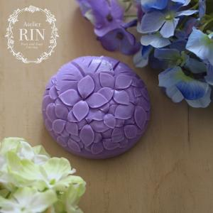 梅雨といえば…「紫陽花」
