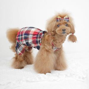 犬服♪チェックかぼちゃパンツオールインワン