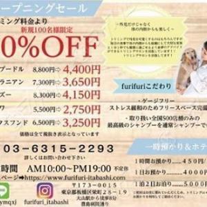 トリミングサロン&ドッグホテル「furi furi ITABASHI」♪