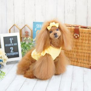 犬服♪5colorクロップTシャツ