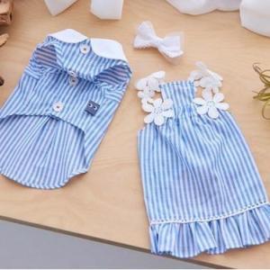 犬服♪It's sunny outside「Blooming stripe dress」