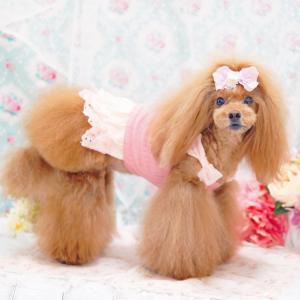 犬服♪ひらひらリボンワンピース