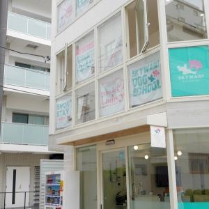 トリミングサロン♪新店舗オープン!!!