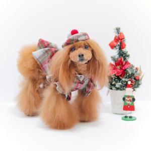 犬服♪【bobotete】チェックウールツイストドレス & チェックウールベレー帽