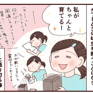 ワタシガチャントソダテル!!