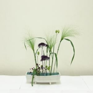 生徒さん 白い花器に、スモークグラスと渋い紫ユウギリソウ