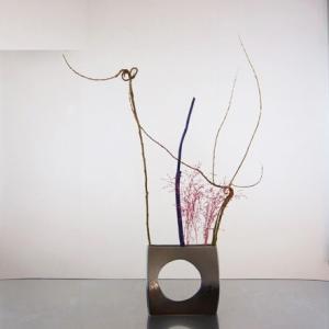 花材で、空間に形を創作をする 面白いよ~♪